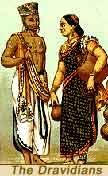Indija Dravid