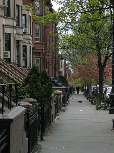 Sjedinjene Američke Države -Brooklyn