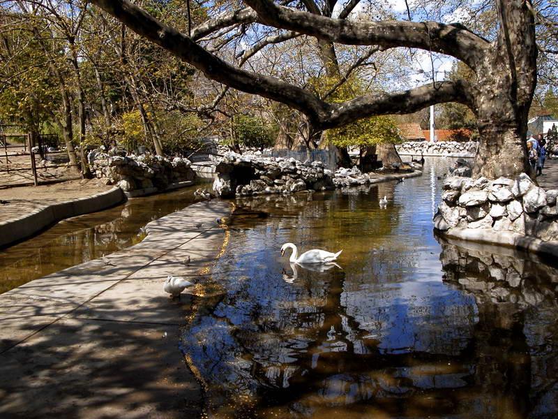 Parkovi i česme Beograda Zoo